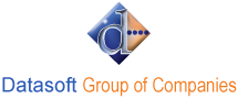 Datasoft Group of Company Logo